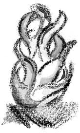 martha-angelica-perez2.jpg